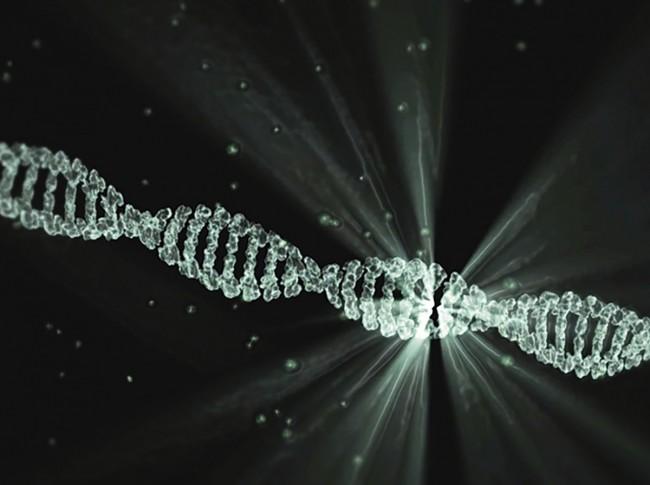 Bilimsel Tespitler ve Kur'an'daki Mucizeler / Röportaj
