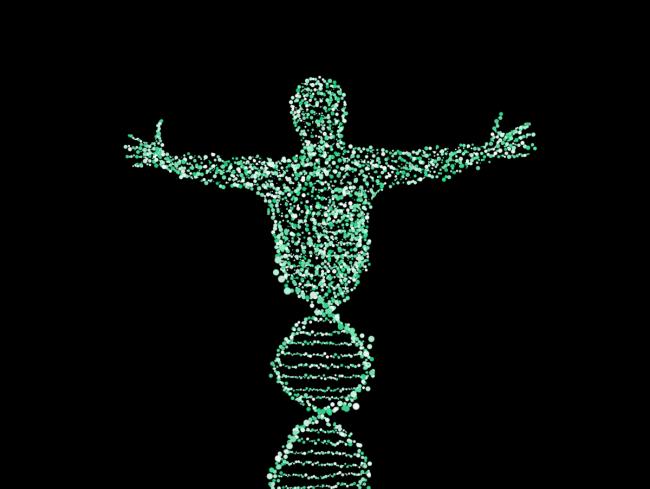 Evrimcilere Bir Darbe Daha: ''Çöp DNA'lar'' Çöpden Çıkmaya Başladı
