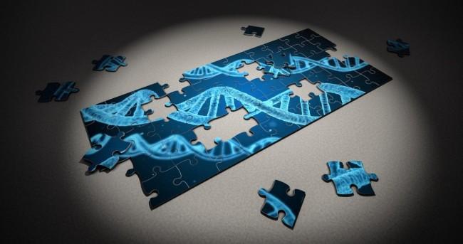 DNA'daki Sır