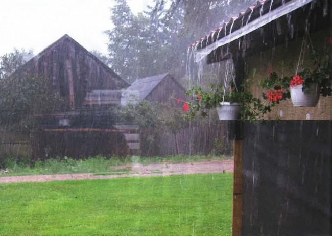 Nisan Yağmurundaki Şifa