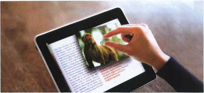 Dijital Yayıncılık Hızla Büyüyor!