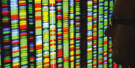 Canlılarda Kromozom Değişimi