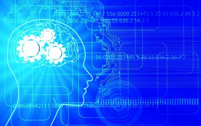 İnsan Beyninin Yapısı ve İşleyişi