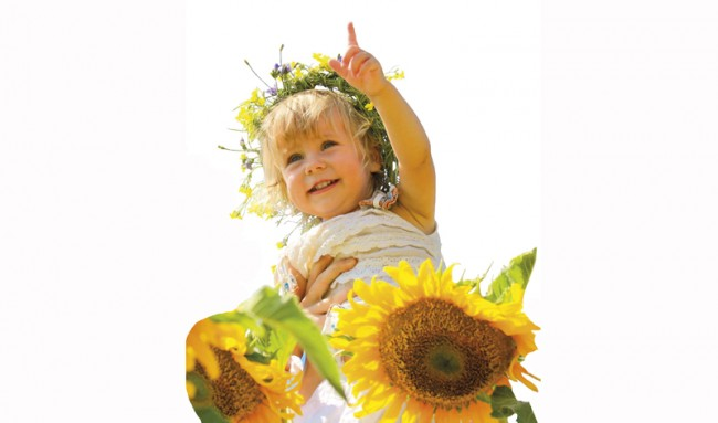 Ayçiçekleri Neden Güneşi İzler?