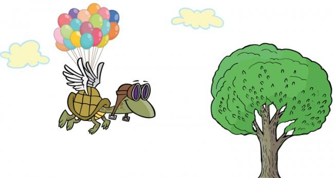 Ağaca Çıkan Kaplumbağa