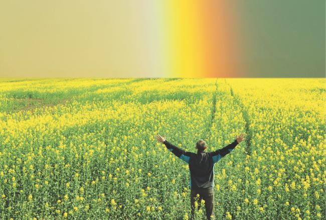 Sevinç Kaynaklarımız