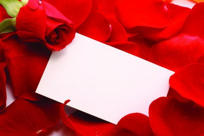 En Sevgiliden Gelen En Uzun Mektup