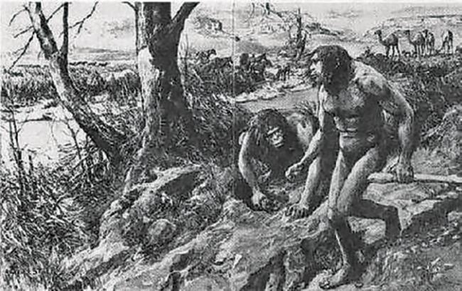 Bir Evrim Masalı: Hesperopithekus Haroldcooki
