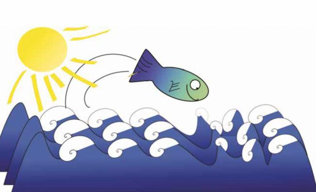 Taze Balık