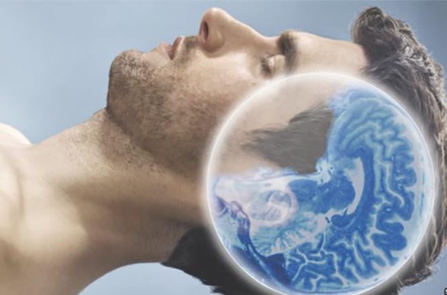 İnsan Beynine Özgü Heyecan Verici Keşif: Kuşburnu Nöronları