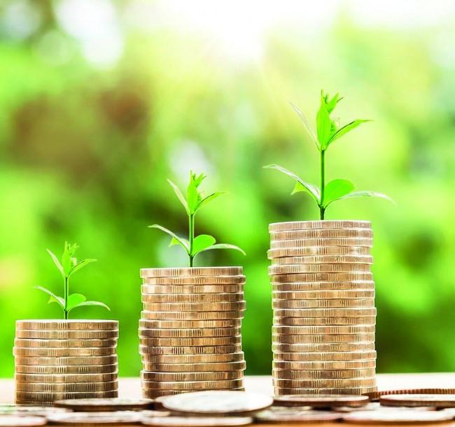 Gerçek Yatırım Yapıp, Peşin Kâr Etmek İster misiniz?