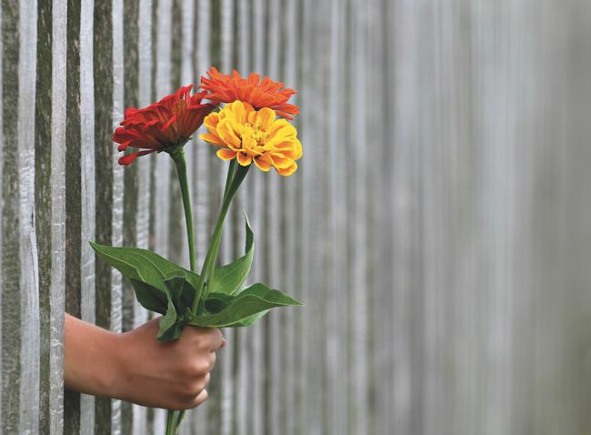 Ruh Sağlığını Belirleyen İki Duygu: Sevgi ve Güven / Duygulara Renk Verseydik Hangi Rengi Alırlardı?