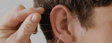 Kulak Kepçesi Sadece Ses Toplamak İçin mi?