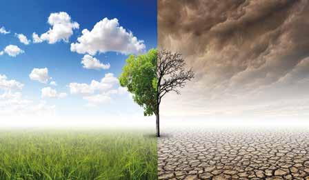 Küresel İklim Tahminleri