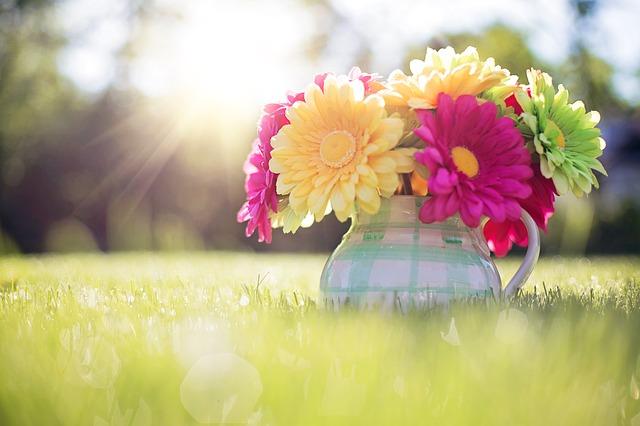 Bir İlkbahar Sabahı Güneşle Uyandın mı Hiç?..