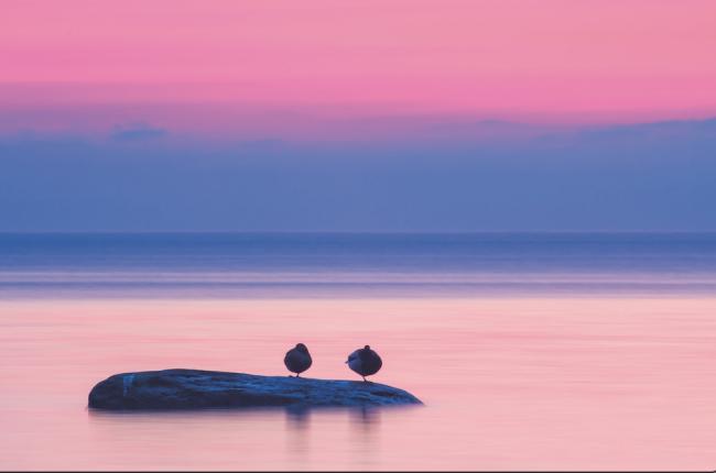 Sessizlik Terapisi / Sessizliği Şifa Bilmemiz Lâzım